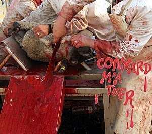 Abattage des animaux façon halal et casher