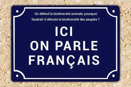 Les maux de la langue française